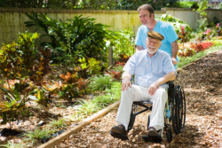 old man on a wheelchair